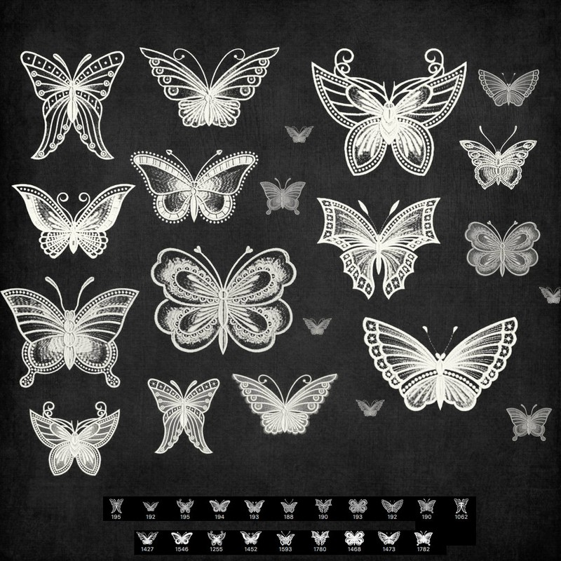 Photoshop brushes lace, butterfly