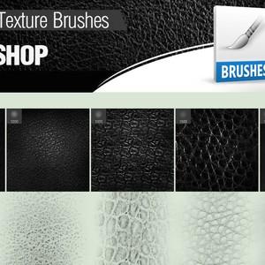 5 Leather Brushes