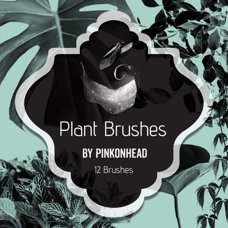 Photoshop brushes leaves, nature, plants