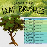 17 Photoshop Leaf Detail Brushes