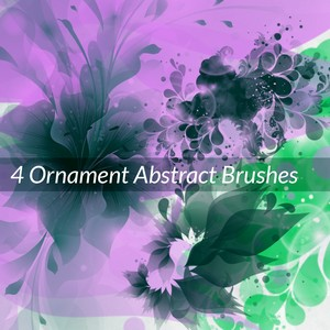 4 Ornament Abstract Brushes