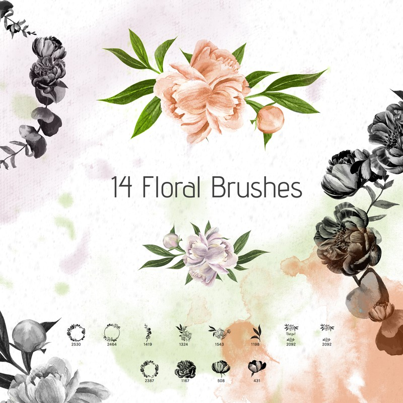 Photoshop brushes peony, flowers, wreath