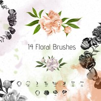 14 Peonies Brushes