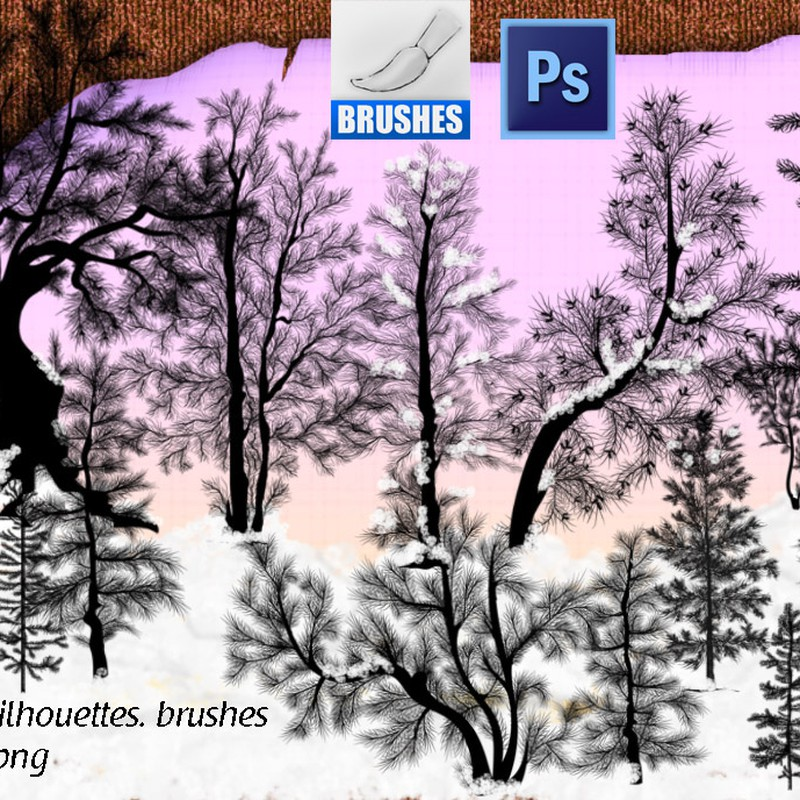 Photoshop brushes pine, silhouettes, nature, tree, conifer