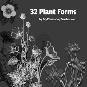 32 Plant Forms Brushes