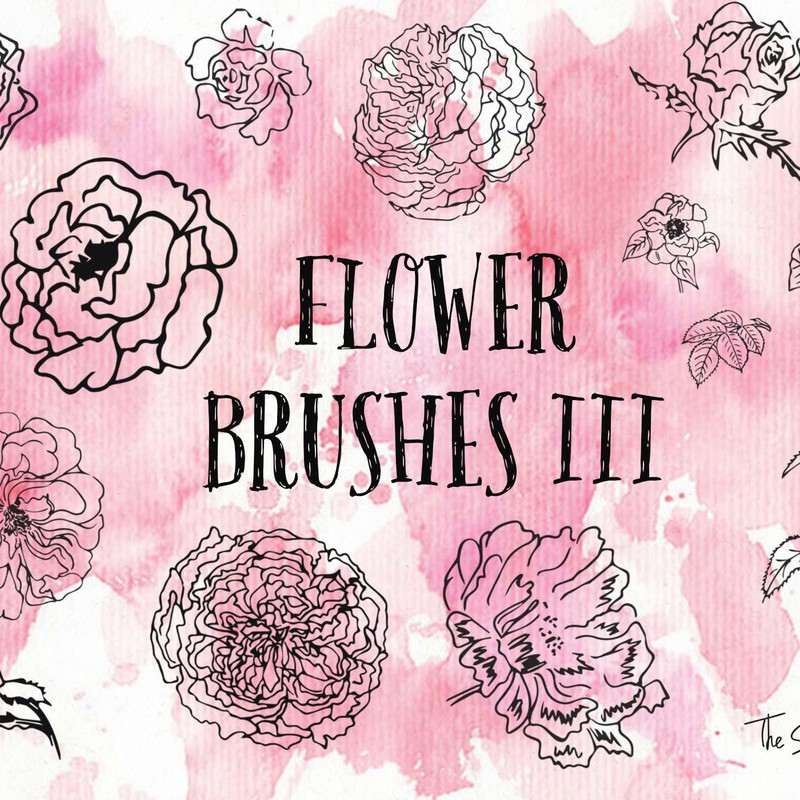 Photoshop brushes floral, flower, sketch