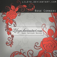 Rose Corners Floral Brushes
