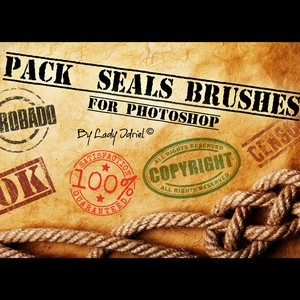 Quality and Guarantee Badges Brushes