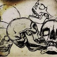 Hand Drawn Skull Brushes