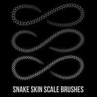 Snake Skin Scale Brushes
