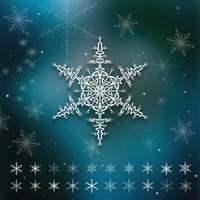 20 Snowflake Brushes
