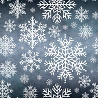 10 Snowflake Brushes