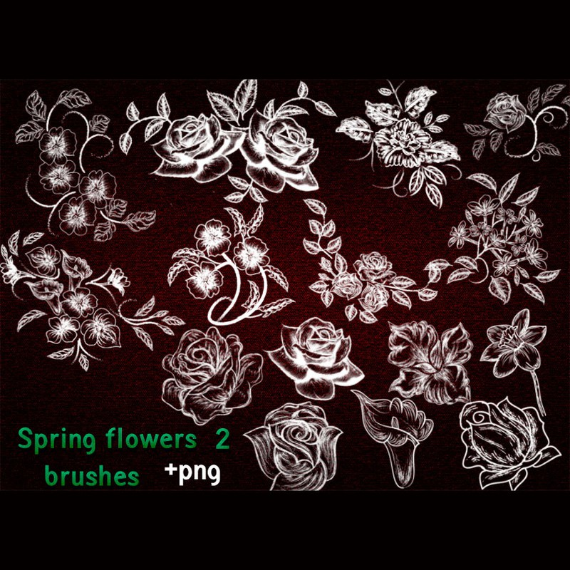Photoshop brushes flowers, silhouettes