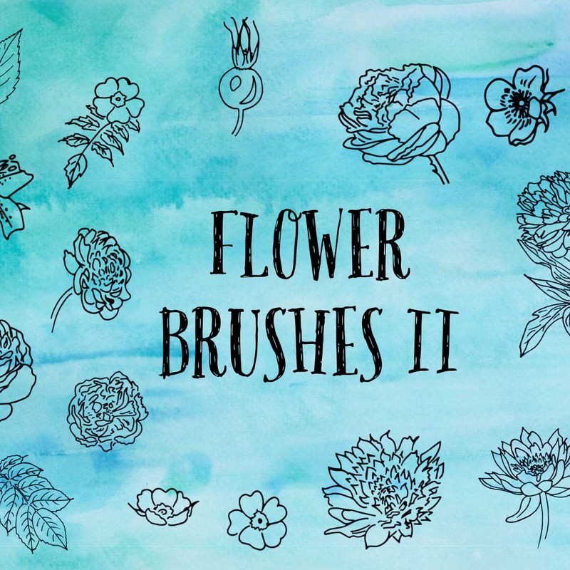 Photoshop brushes flower,floral,sketch
