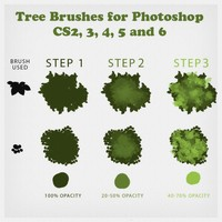 Tree Brushes - Tutorial and Brushes