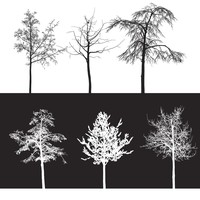 10 Trees Brushes