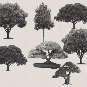 7 Free Trees PS Brushes