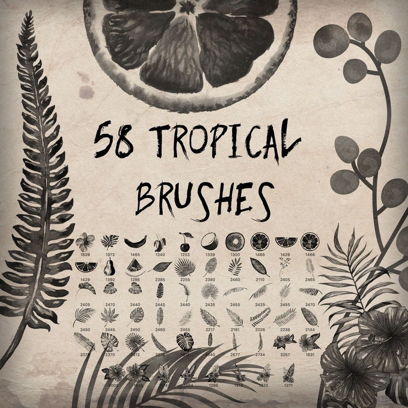 Photoshop brushes tropical, leaves, flowers