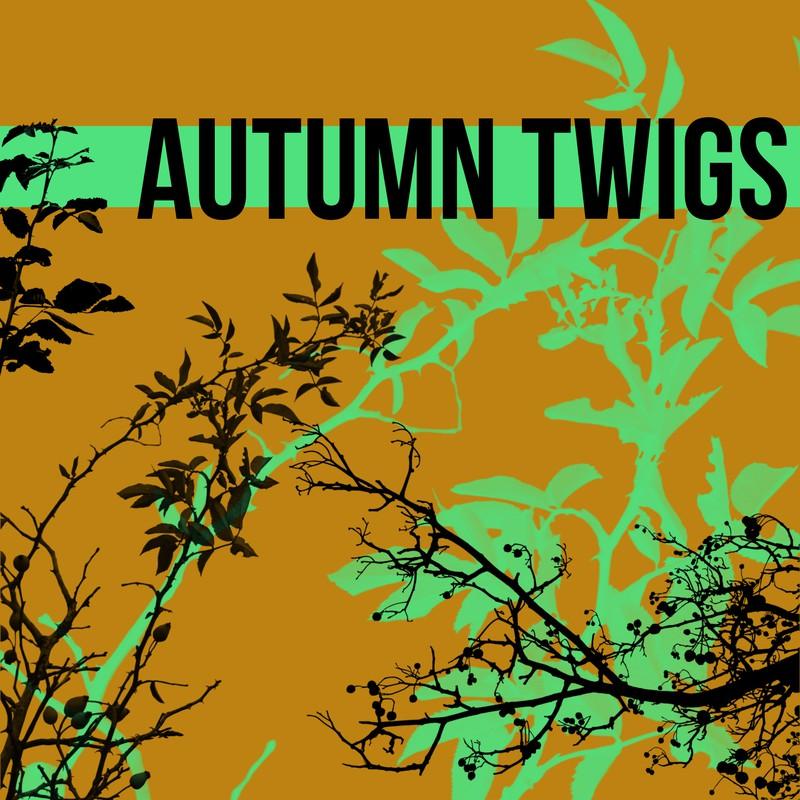 Photoshop brushes twig, autumn
