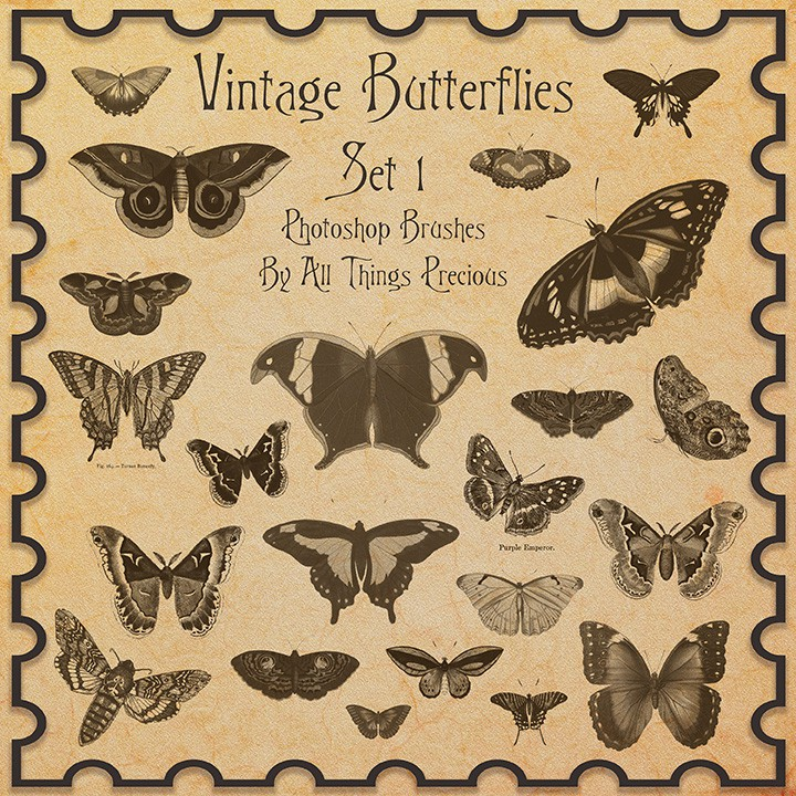 Photoshop brushes vintage butterflies