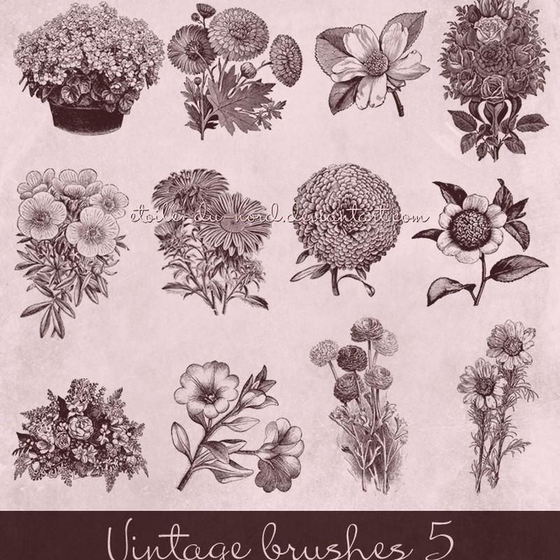 Photoshop brushes flower, vintage