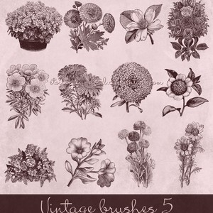 Vintage Flowers Brushes
