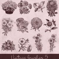 Vintage Flowers Brushes