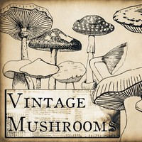 Vintage Mushrooms Brushes