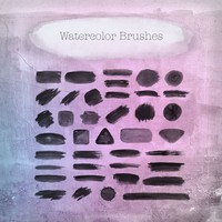 40 Waterlocor Brushes