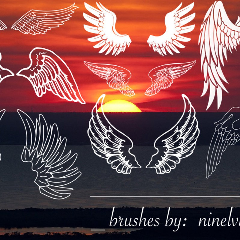 Photoshop brushes wings, outline,decorative