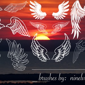 Eight Wings Brushes