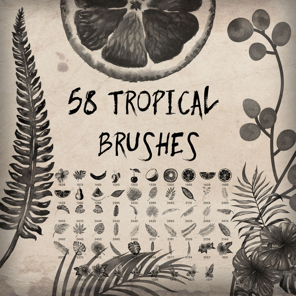 58 Tropical Brushes Photoshop Brushes