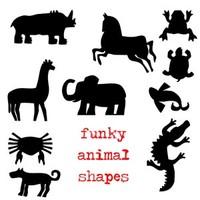 Funky Animal